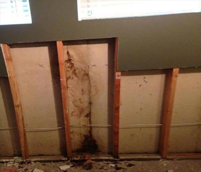 Mold Removal and Remediation in Caldwell After