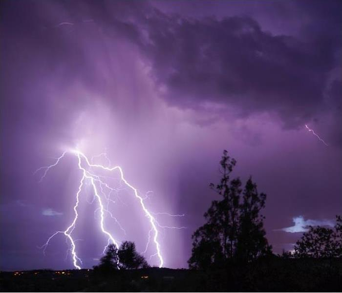 cloud to ground lightning in night sky; trees in foreground