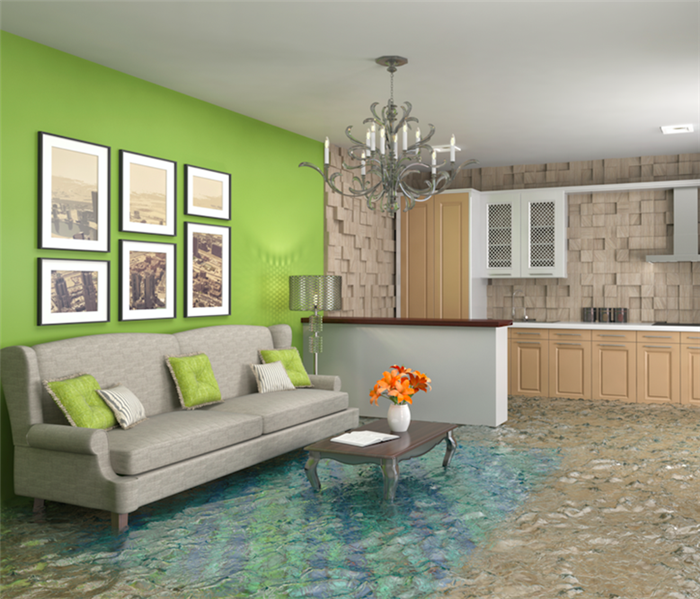 Storm Damage Who Wants to Handle Flood Damage Remediation in Nampa Alone?