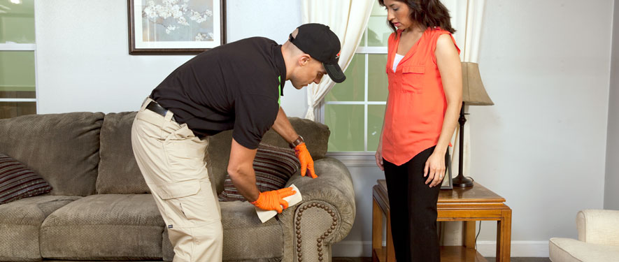 Nampa, ID carpet upholstery cleaning