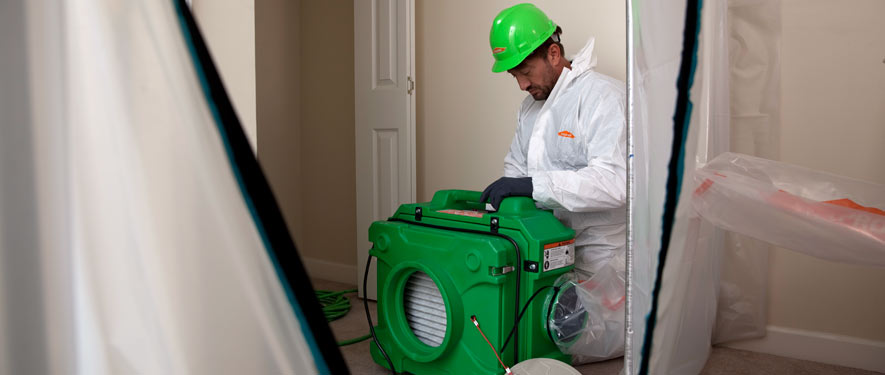Nampa, ID mold cleanup