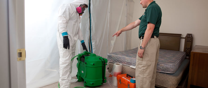 Nampa, ID mold removal process